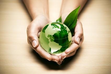 concept écologie planète terre verte